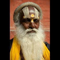 734832 Portrait heiliger Mann Sadhu