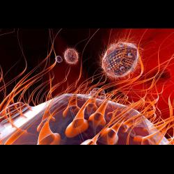 1265741 Viruses 3D Rendering