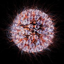 1293482 HI-virus 3D Rendering
