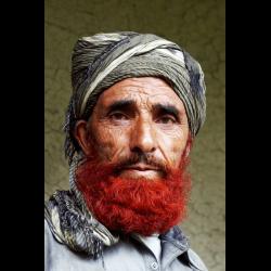 718566 Portrait eines alten Mannes